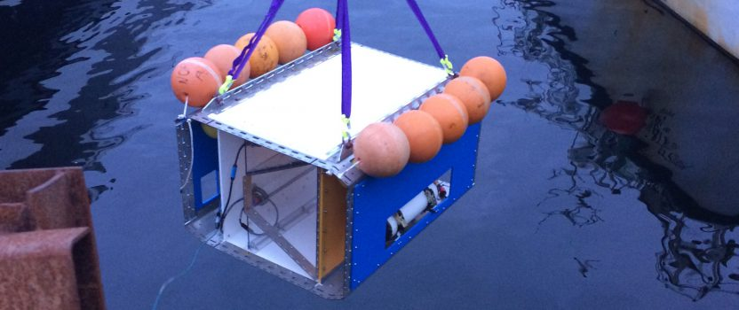 First successful buoyancy test for Deep Vision