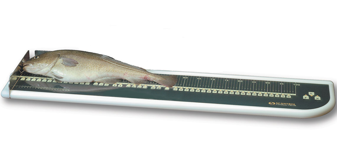 FishMeter board with fish